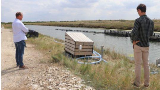 BIMSA prévention roll'oyster